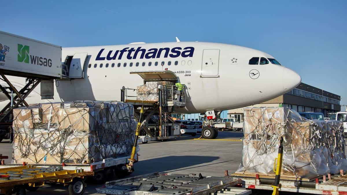 A big white Lufthansa plane gets loaded with cargo through side door.