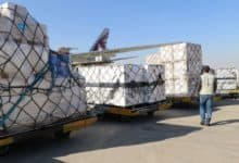 Cargo on pallets waiting to get loaded on a plane.