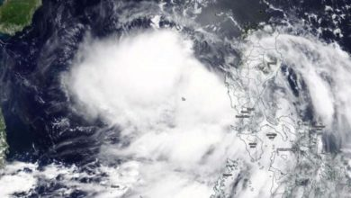 Satellite photo of Tropical Storm Nuri, June 12, 2020.