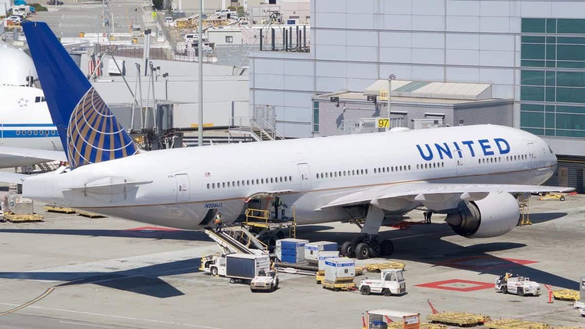 White jet, blue tail, United Airlines at airport gate.