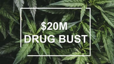 Marijuana leaves illustrate a recent $20 marijuana bust at the Canada-U.S. border