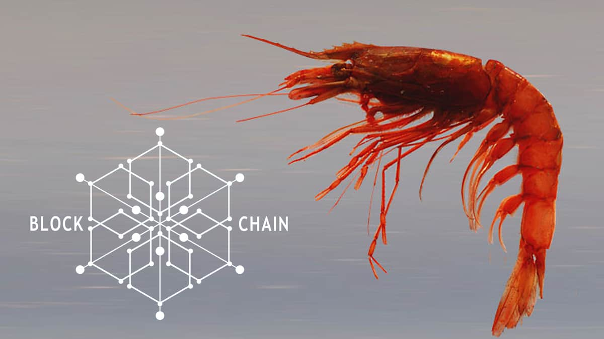 Connecting seafood producers to consumers via blockchain (Photo: NOAA)