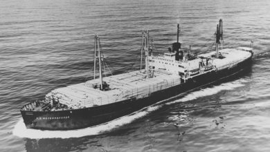 Photo of Maritime History Notes: When US intercoastal lumber trade floated fleets