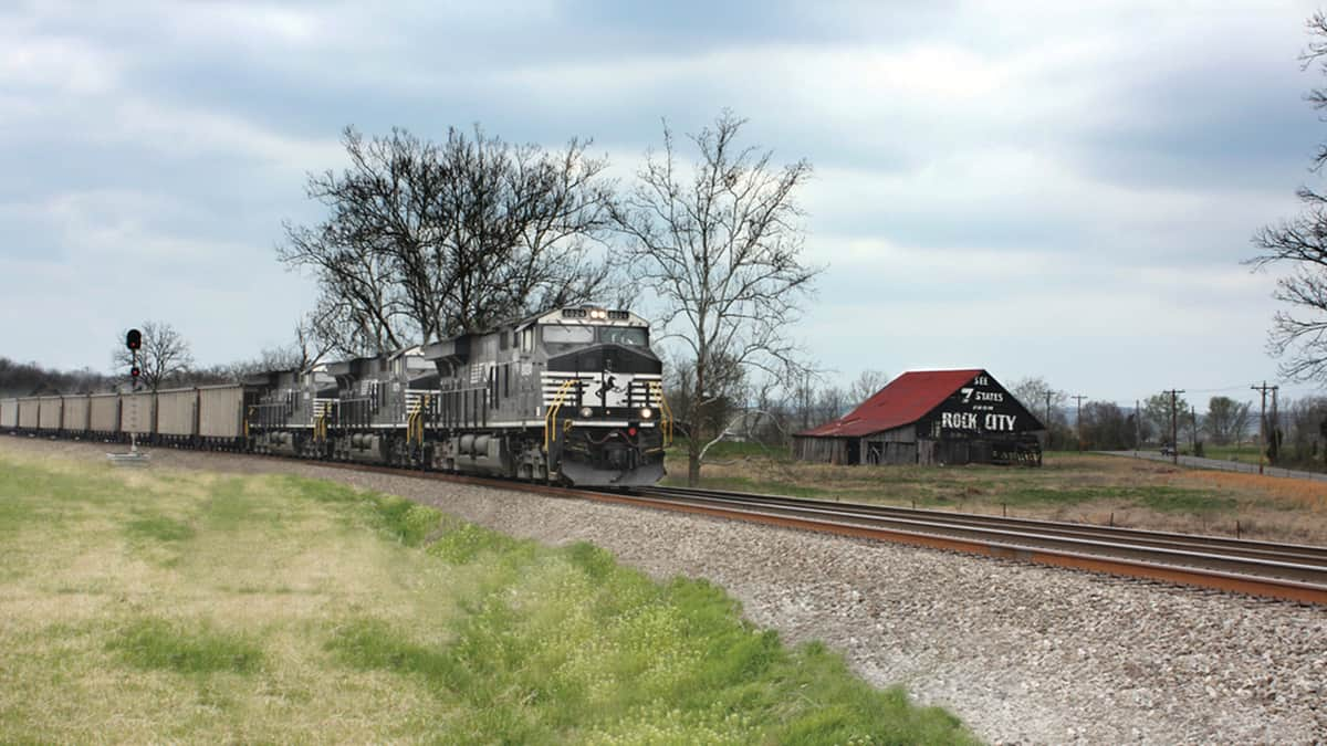 A photograph of a Norfolk Southern train traveling through a field.