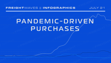Photo of Daily infographic: Pandemic-driven purchases