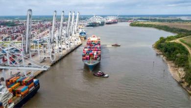 Photo of Savannah volume down just 1% and total tonnage a record