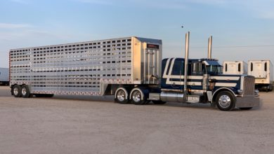 Photo of Texas truckers now steer Oklahoma livestock trailer maker (With Video)