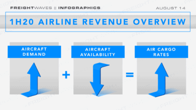 Photo of Daily Infographic: 1H20 airline revenue overview