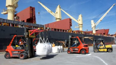Photo of Enstructure acquires bulk terminal at Port Canaveral
