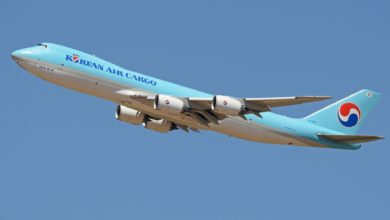 A pale blue Korean Air 747 cargo jet soars into a bright blue sky. Korean Air's cargo division helped the airline survive the coronavirus downturn.