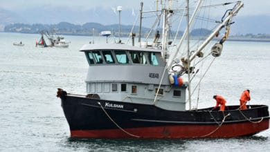 Photo of Commentary: Keeping Alaska's seafood supply chain intact