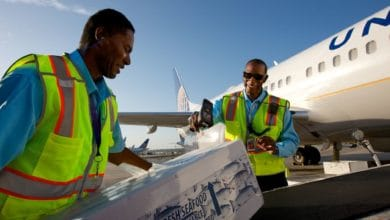 United Airlines workers place box of seafood on conveyor belt to load plane on sunny day. United announced big job cuts.
