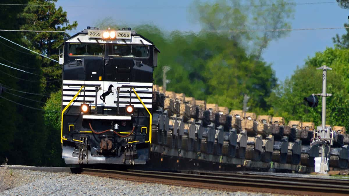 A photograph of a Norfolk Southern train traveling through a forest.