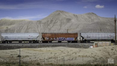 A photograph of grain hopper cars traveling on some railroad track. There is a mountain range in the distance.