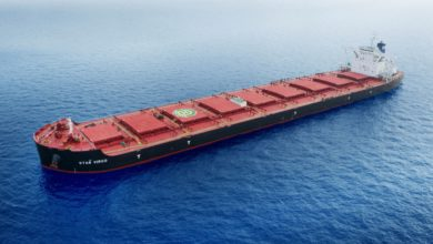 Photo of Dry bulk shipping rates have just hit a new 2020 high