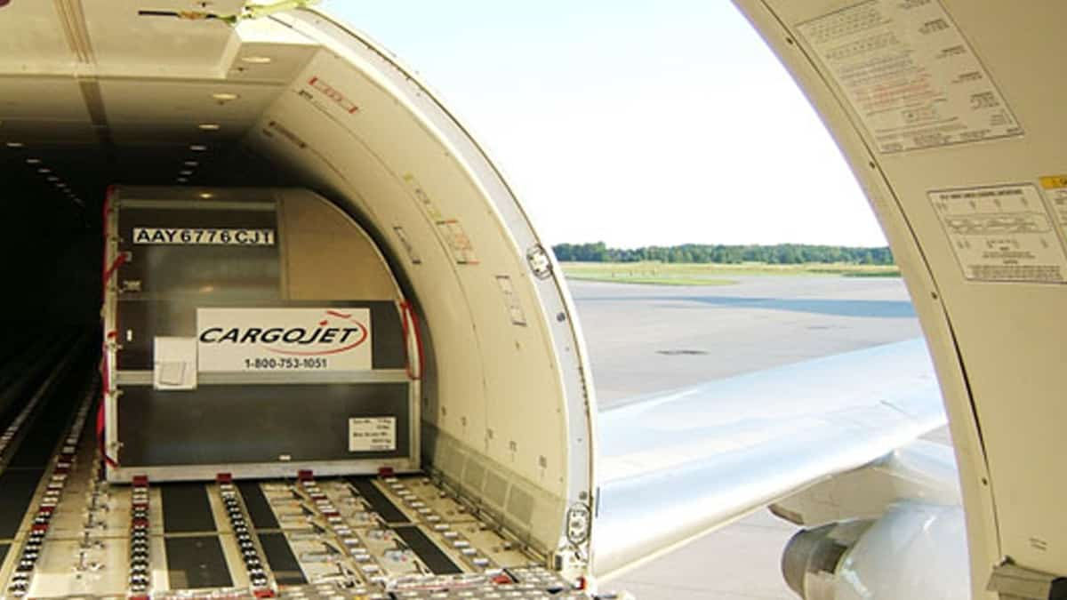 Inside view of the cargo hold of a jet with a small container inside and the door open.