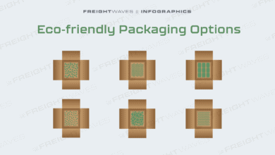 Photo of Daily Infographic: Eco-friendly Packaging Options