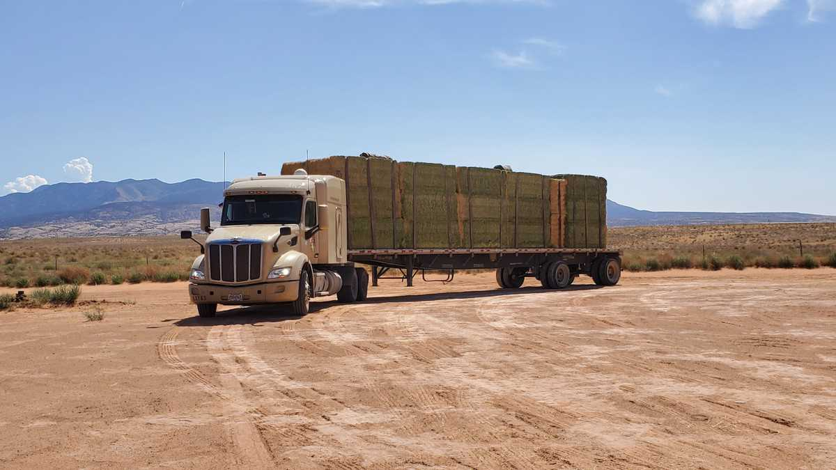 Hornady and Builder's Transportation Co. complete merger