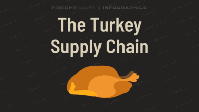 Photo of Daily Infographic: The turkey supply chain