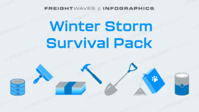 Photo of Daily Infographic: Winter Storm Survival Pack