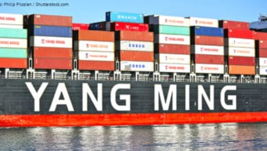 Photo of Yang Ming reports return to profitability