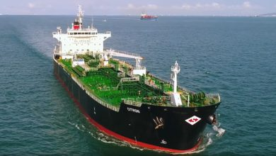 Photo of Tanker shipping at risk of rare winter hibernation