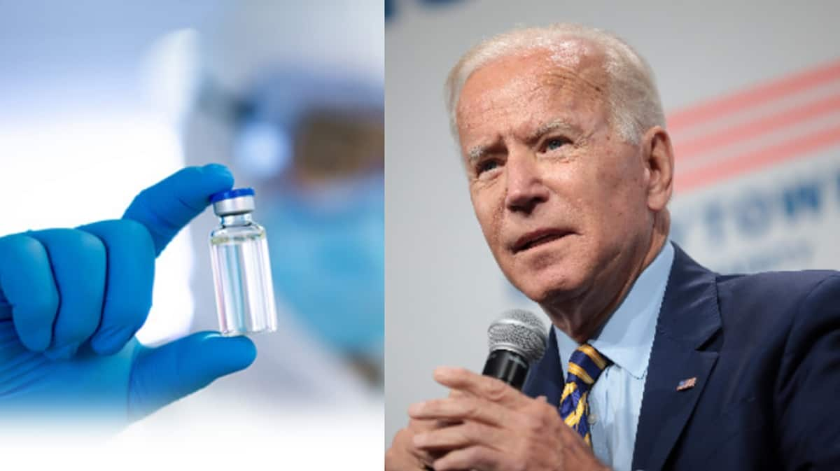 How vaccine and Biden victory will impact shipping - FreightWaves