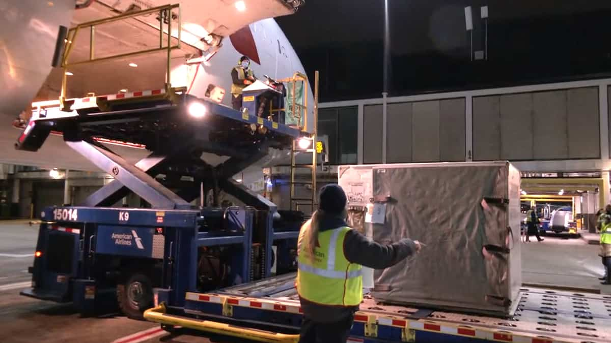 A hydraulic lift raises metal containers with cargo to door of a jet at night.