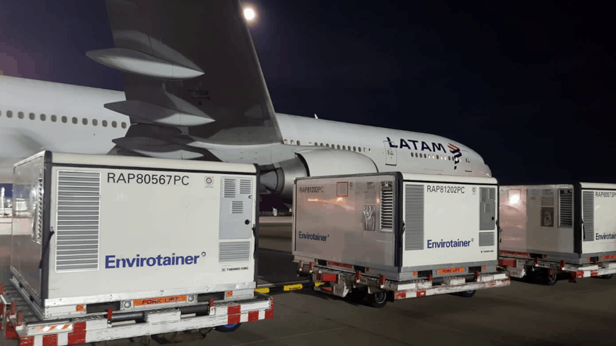 Large insulated containers wait on carts to be loaded on a cargo jet at night.