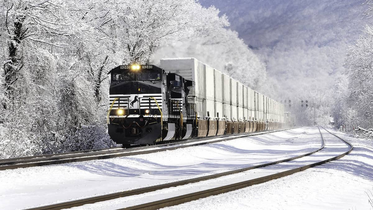 A photograph of a Norfolk Southern train traveling through a snowy forest.