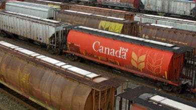 A photograph of grain hopper cars in a rail yard.