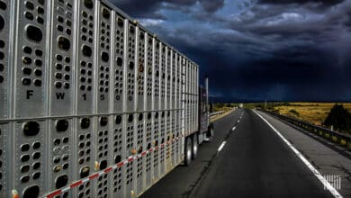 Tractor-trailer heading down a highway with thunderstorm cloud ahead.