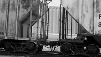 A black and white photograph of grain hopper cars.