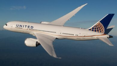 A large United Airlines jet, white with blue tail, flies high in the sky.