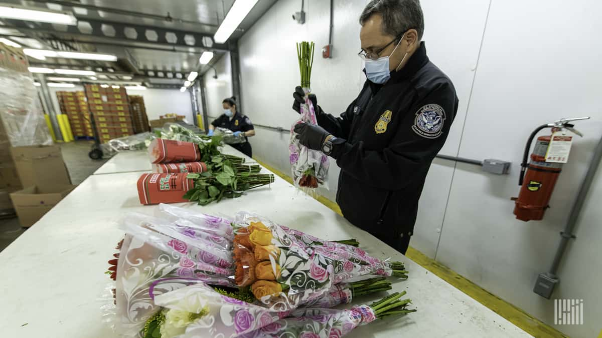 Behind-the-scenes video: Checking Mother's Day flowers at the border