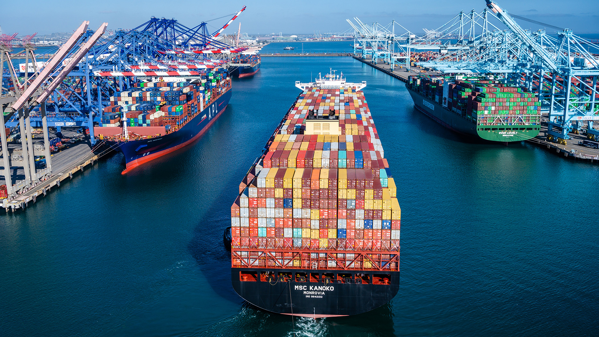 Shipper group pressures Congress to clamp down on ocean carriers