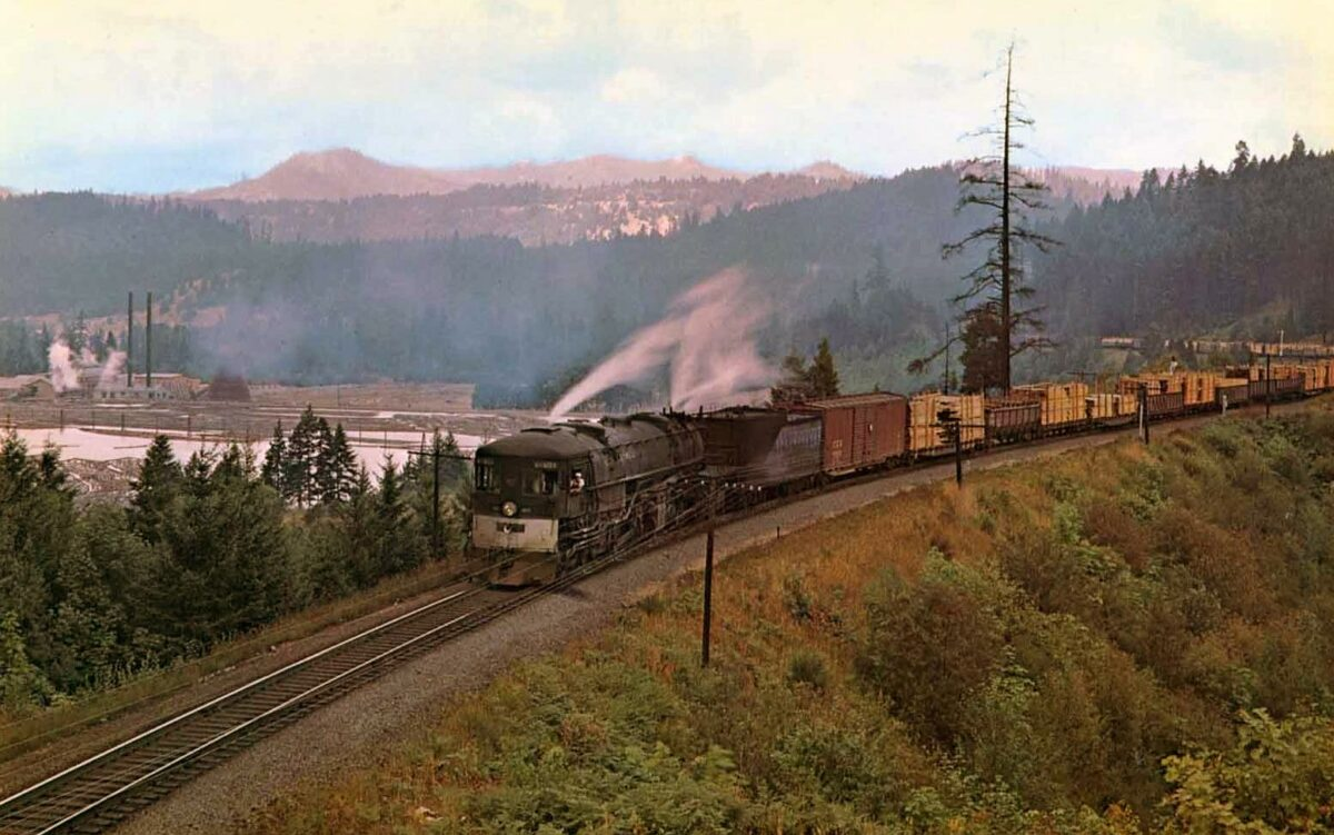 """In this Southern Pacific publicity photo, 4-8-8-2 """"Cab Forward"""" #4177 (AC-8) has the first section of train #671 loaded with lumber as it climbs the 1.8% grade outside of McCredie Springs, Oregon on the Shasta Division during the summer of 1947."""
