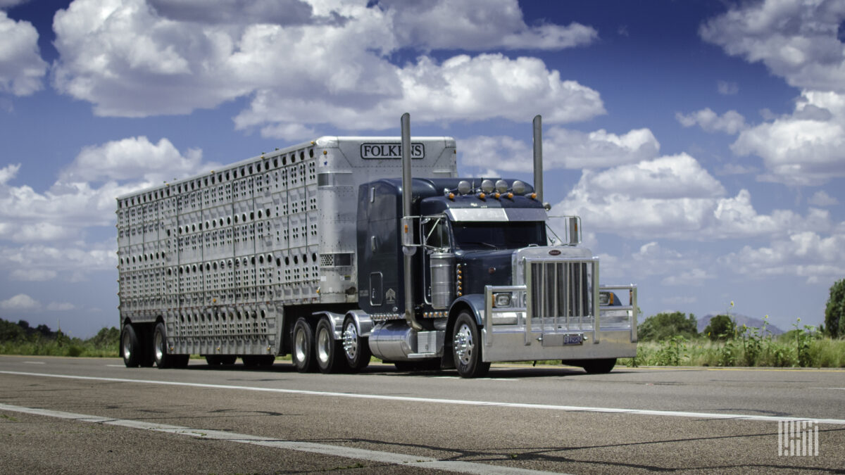 Livestock haulers urge FMCSA action in wake of JBS cyberattack
