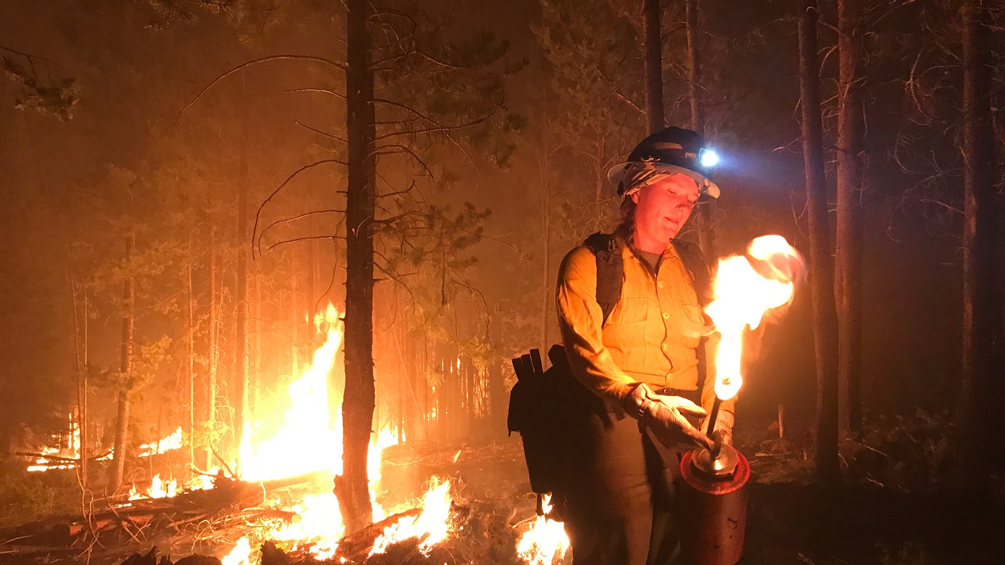 Firefighter at the Bootleg fire in southern Oregon.