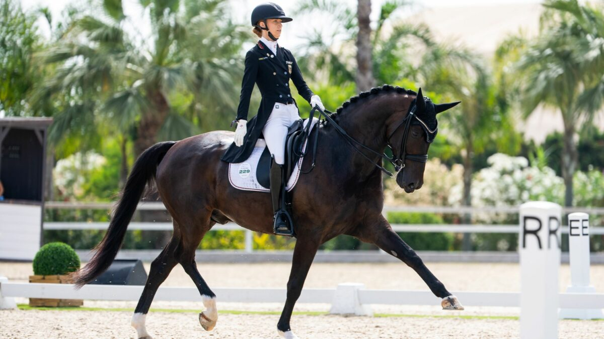 How are 325 horses getting to the Tokyo Olympics?