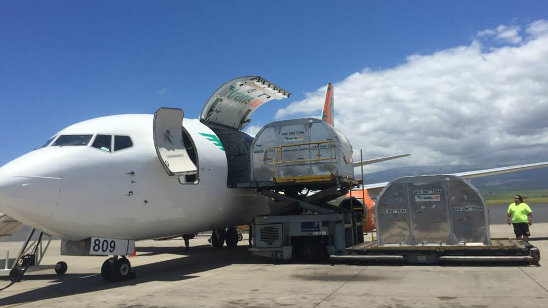 A Boeing 737 cargo plane getting a pallet loaded through front door on a sunny day.