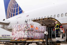 A large United Airlines jet gets loaded through its cargo door.