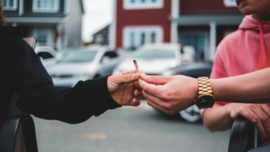 Recreational cannabis delivery same-day on-demand direct-to-consumer
