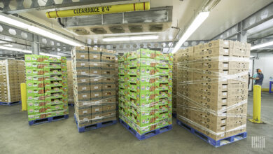 Food producers struggle to find workers