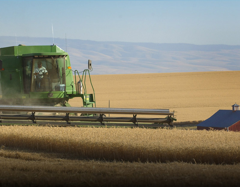 Wheat being harvested in Oregon. Wheat is one of the state's major crops and is a key export at the Port of Portland.  (Photo: Port of Portland)