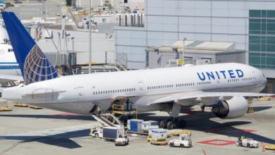 A United Airlines jet at the airport gate with cargo containers on the tarmac ready for loading.