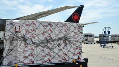A large pallet with boxes of lobster under a net sitting on tarmac next to an Air Canada plane.