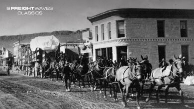 Depending on the weight of the load, many teams of horses might be needed. (Photo: westernmininghistory.com)